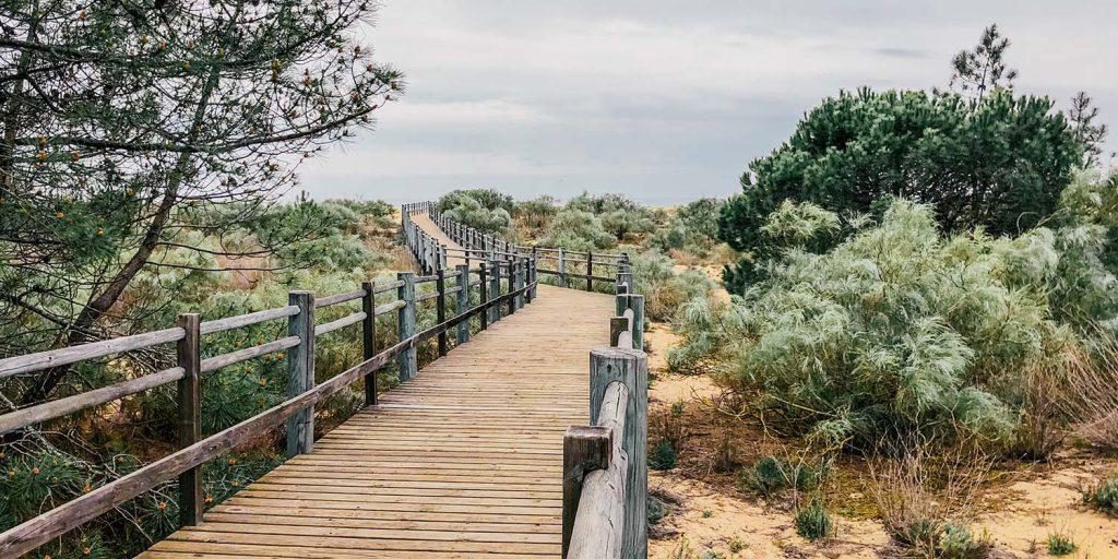 Strandopgang naast camper parkeerplaats in de Algarve, Portugal.