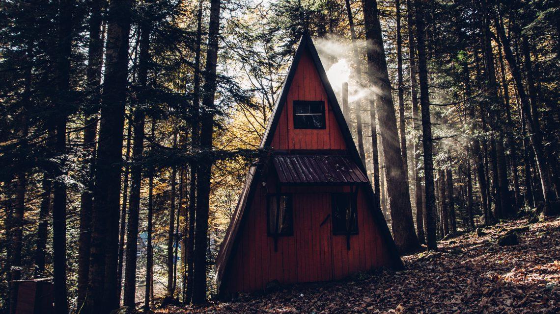 Off-grid huisje in het bos