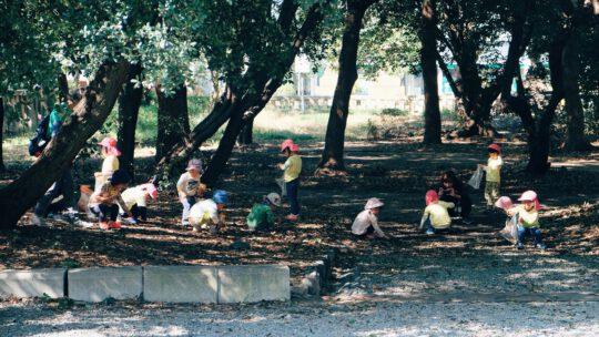 kinderen die samen buiten spelen tussen de bomen